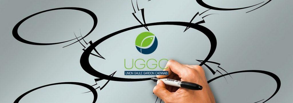 Organisation UGGC